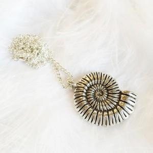 ammonite_large